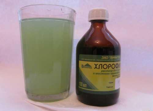 Хлорофиллипт для полоскания горла