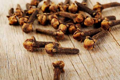 Гвоздика пряность: полезные свойства и