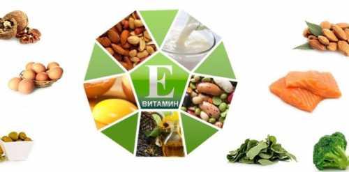 Витамин Е: полезные свойства, в чём польза и вред