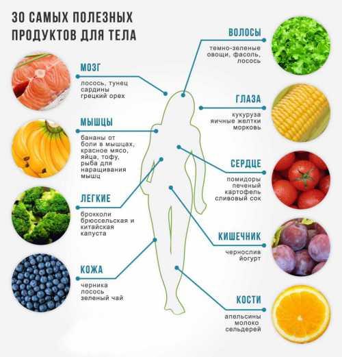 Самые  полезные овощи: описание состава разных