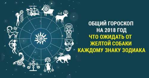 Прикольный гороскоп по знакам Зодиака на 2018 год Собаки